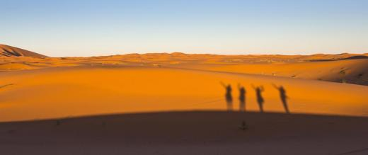 Shadows of trekkers on a dune