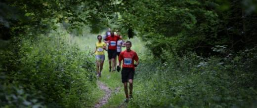 South Downs Trail Marathon and Half Marathon runners